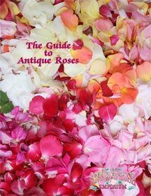The Antique Rose Emporium