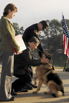 Lex, a German shepherd whose trainer, 20-year-old Marine Corp. Dustin Lee, died in a mortar attack in Falluja in 2007. Lex, who had played with and slept alongside Corp. Lee throughout their service, was also injured in the attack; the dog at first refused to leave his side and had to be pulled away. Lee's family lobbied extensively for the Marines to retire Lex before the customary age of 10, and Lex is now living with the Lees at their home in rural Mississippi.