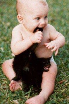 funny baby and cat animal