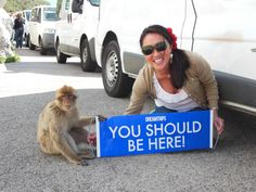 So simple, even the monkey gets it.  #worldventures #youshouldbehere #YSBH