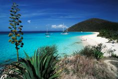 cancun mexico, beaches, vans, jost van, british virgin islands, bays, white, place, caribbean