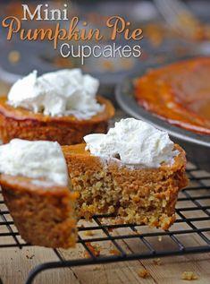 Mini Pumpkin Pie Cupcakes  I love fall recipes and treats :)