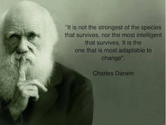 ..Survival according to Darwin