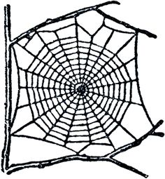 The Graphics Fairy: spider web