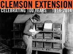 Chicken breeding and egg production. Date unknown. Image courtesy of Clemson University Special Collections. #ClemsonExt100