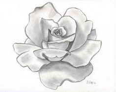 Angel Drawing Of Pencil Sketches | rose tattoo designs pencil drawings of houses , pencil drawings ...
