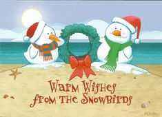 Snowbird Wishes Boxed Christmas Cards