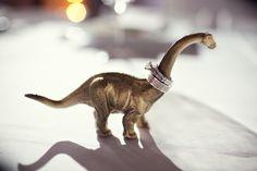 Dino ring holder