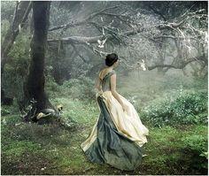 dream, into the woods, fairy tales, fairi, forest, magic garden, walk, fairytale fantasies, snow white