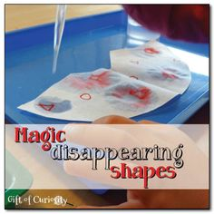 Magic disappearing shapes activity - kids will get a kick out of practicing their shapes with this super fun activity using a coffee filter and some water. The effect looks like magic!! #preschool #efl #education (repinned by Super Simple Songs)