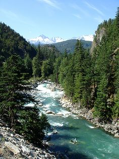 Whistler, BC! Gorgeous in the summer, perfect for skiing in the winter