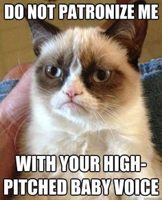 Love this grumpy kitty!!