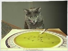 Cat food and treat recipes to remember when throwing my cat a party. Seriously, the kids love it!