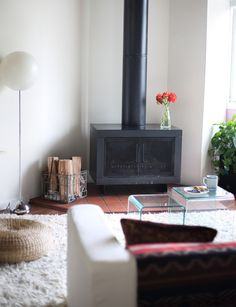wood stove, rug