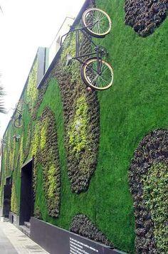 Vertical garden. Regina Street Center, Mexico City