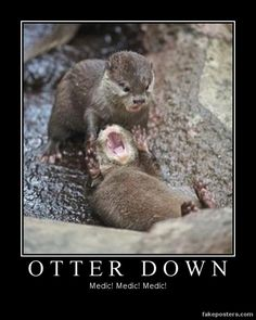 Otter Down - Demotivational Poster