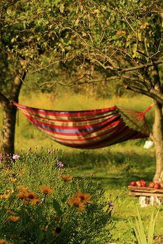 life, relax, hammocks, swing, place, summertim, garden, countri, live