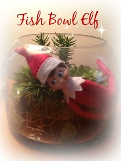 Fish Bowl Elf! Opps! Someone feel in the fish bowl - good thing the water was not in there (or the fish)! Over 25 Easy Elf on the Shelf Ideas to Get Creative with Your Elf This Year!