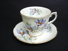 Antique Cup and Saucer by Royal Grafton China