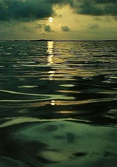 Galapagos Island - Eliot Porter