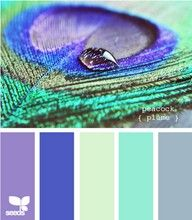 peacock color palette - Google Search