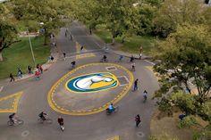 Bike circles at UC Davis