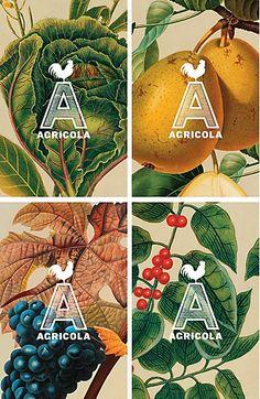 Agricola restaurant identity by Mucca graphic design, restaurant logo