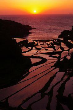 Beautiful sunset at Rice terrace, Saga, Japan