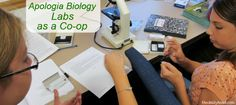 Apologia Biology- Co-op Week 2~ We're doing labs together at co-op. Sharing how we are using Apologia Biology both at home and at our small co-op (15 Bio students).