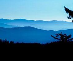 Clingmans Dome, Great Smoky Mountains National Park, TN #bmc_nationalparks