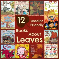 12 Toddler Friendly Books About Leaves - House of Burke