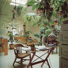 studio, interior, hanging plants, dream, offic, jungl, hous, green rooms, hanging gardens