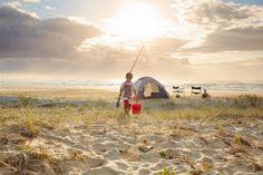 fraserisland fraserislandfish, fraserislandfish homeoffish, eurongbeach fraserislandbarg, camping, camp spot, fraser island, queensland australia, bay queensland, australia place