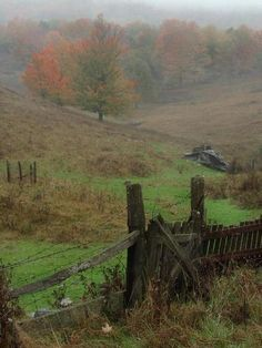 Gandy Creek, West Virginia