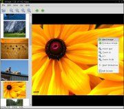 Mirage is a fast and simple GTK+ image viewer.