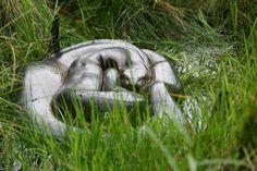 Percy Ccopa - Anaconda