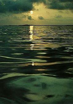 Galapagos Island by Eliot Porter