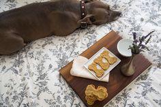 Recetas para perros: galletas de plátano y zanahoria