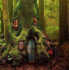 fairies, dream, gnome, fairy houses, tree houses, treehous, trees, magic forest, tree homes
