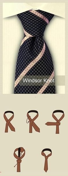 WINDSOR KNOT diagram...Taylor law prom