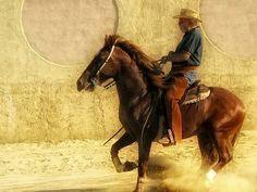 Horseback Riding in