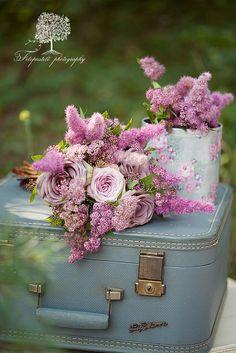 spring flowers, pink roses, pink flowers, vintage suitcases, purple