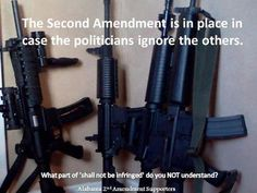 The Second Amendment is in place in case the politicians ignore the others.