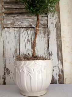 antique McCoy jardiniere, matte white, white pottery
