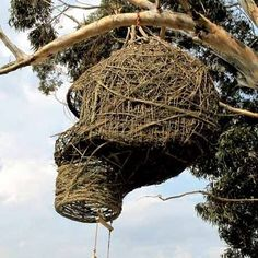 This tree house looks like a bird nest