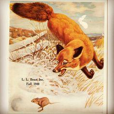 L.L.Bean Fall 1940