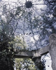 Iron gazebo, lovely garden ceiling with ornate wrought iron flourishes and stone pillars, lavender, flowers, lilac