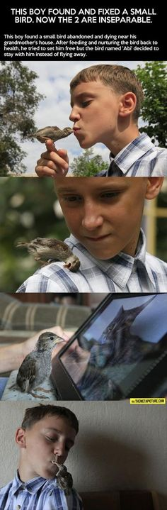 Faith In Humanity Restored – 23 Pics. I usually hate birds but that second picture just hit me right in the feels!