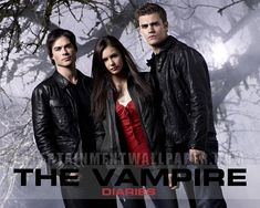 The Vampire Diaries...A guilty pleasure.
