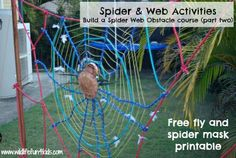 Spider Web Activities and Games